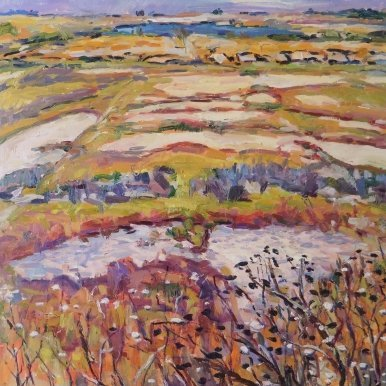 Buy Cornish Art Jim Carey Marsh Memory