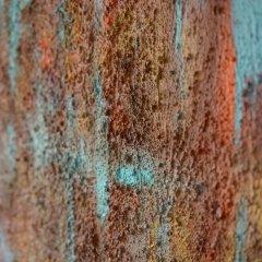 Buy Cornish Art Marielle Indian Summer Close Up