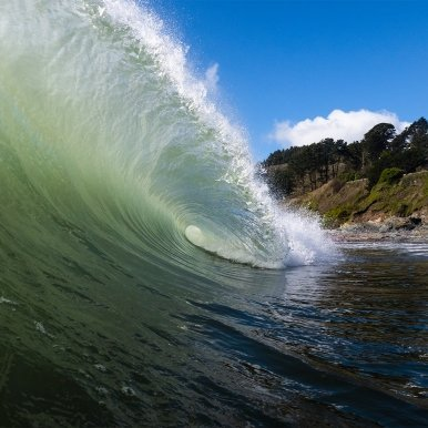 Buy Cornish Art Mrb Wave Beneath The Trees