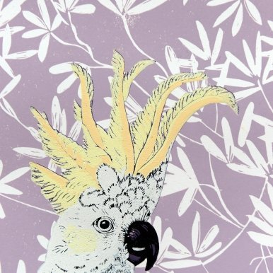 Buy Cornsh Art Beth Munro Cockatoo Image