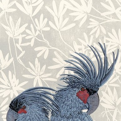 Buy Cornsh Art Beth Munro Grey Palm Cockatoo